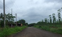 Tạo sự đồng thuận trong xây dựng nông thôn mới ở huyện Bù Đăng, tỉnh Bình Phước