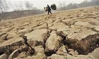 Hỗ trợ ứng phó với biến đổi khí hậu năm 2015 và giai đoạn sau