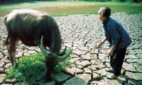 Việt Nam thúc đẩy khuôn khổ pháp lý toàn cầu mới về biến đổi khí hậu