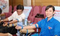 Thành phố Hồ Chí Minh tôn vinh 780 người hiến máu tình nguyện tiêu biểu