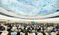 Việt Nam hội nhập sâu rộng vào các tổ chức Liên hợp quốc