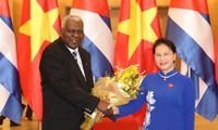 Củng cố quan hệ truyền thống đặc biệt Việt Nam – Cu ba