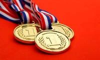 Việt Nam giành 7 huy chương tại Olympic Tin học châu Á năm 2018