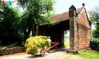 Seminar: Schutz des altertümlichen Dorfes Duong Lam