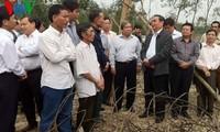 Überprüfung der Aufräumarbeit nach dem Taifun in Zentralvietnam