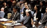UN-Sicherheitsrat verabschiedet Resolution über den Absturz des Fluges MH17