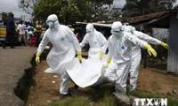 Noch langer Weg bis zur Eindämmung der Ebola-Epidemie