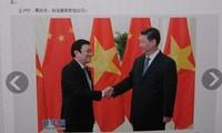 Medien Chinas berichten über die Aktivitäten des Staatspräsidenten Truong Tan Sang beim APEC-Gipfel