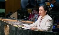 Vietnam will zur Verstärkung der Rolle von ECOSOC beitragen