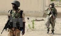 Nigeria nimmt einige wichtige Kämpfer von Boko Haram fest