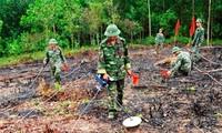 Bildung des Verbands zur Beseitigung der Folgen von Blindgängern in Da Nang