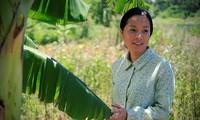 Vietnam nimmt an Weltpremieren Filmfestival der Philippinen teil