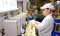 Die Investitionszusammenarbeit zwischen Vietnam und Japan verstärken
