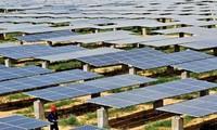 Bau des Solarwärmekraftwerks in der Provinz Ninh Thuan