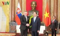 Die Spitzenpolitiker Vietnams treffen den slowakischen Premierminister Robert Fico