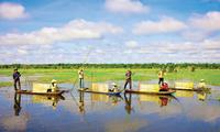 Reise nach Dong Thap Muoi zur Hochwassersaison