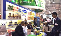 Lokalisierung vietnamesischer Markenzeichen in der globalen Wirtschaft