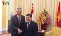 Ho-Chi-Minh-Stadt bietet beste Bedingungen für Investoren aus Singapur