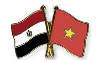 Neue Phase in den Beziehungen zwischen Vietnam und Ägypten