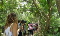 Bewohner der Insel Thoi Son entwickeln Ökotourismus