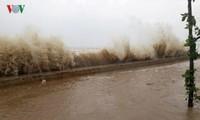 Sechs Tote und 21 Verletzte wegen des Taifuns Doksuri
