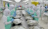 Fitch prognostiziert ein hohes Wachstum für die vietnamesische Wirtschaft