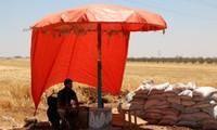 Syrie-L'ONU espère des discussions de paix en octobre-novembre