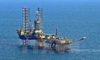 Le vice-président du groupe Exxon Mobil reçu par le vice-président de l'AN vietnamienne