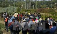 รัฐสภายุโรปเรียกร้องให้ประเทศสมาชิกอียูเพิ่มมาตรการจัดการวิกฤตผู้อพยพ