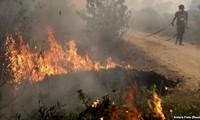 อินโดนีเซียเปิดยุทธนาการดับไฟป่าครั้งใหญ่