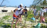 เยาวชนและนักศึกษาชาวเวียดนามที่อาศัยในต่างประเทศเยือนนครดานัง