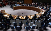 โบลิเวียปฏิบัติหน้าที่ประธานคณะมนตรีความมั่นคงแห่งสหประชาชาติในเดือนมิถุนายนปี 2017
