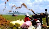ผู้มีสิทธิ์เลือกตั้งชื่นชมมาตรการของหน่วยงานการเกษตรเพื่อการพัฒนาอย่างยั่งยืน