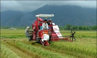 Vietnamese agriculture faces new opportunities and challenges