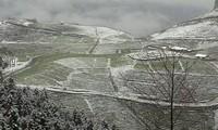 Sapa town in snow