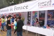Francophone Festival of the Mekong River Delta opens