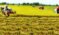Vietnam joins the Global Alliance for Climate Smart Agriculture
