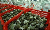 Vietnam's reaction to the US's imposition of anti-dumping tariffs on Vietnamese shrimps