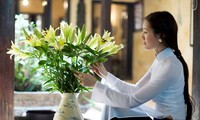 Hà Nội 12 mùa hoa – Hanoi, 12 flower seasons