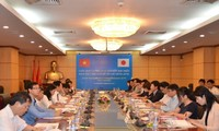 Vietnam, Japan jointly adapt to climate change