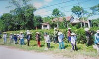 Quang Tri women contribute to local new rural development