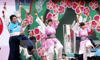 Vietnam-Japan cultural exchange held in Dak Lak