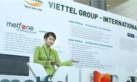 Vietnam promotes overseas investment