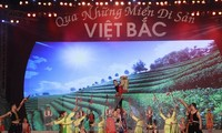 Viet Bac heritage roadshow opens
