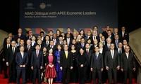 APEC's challenges in unifying economies