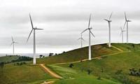 German wind energy companies seek business in Vietnam
