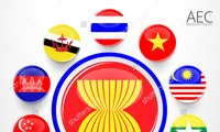 Vietnam strives to become ASEAN's top countries with its particular strengths