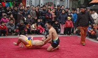 Mai Dong wrestling village in spring