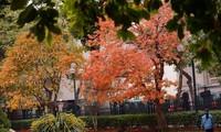 12 stunning shots of Hanoi in March