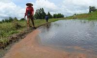 Fresh water reaches Vietnam's Mekong Delta provinces